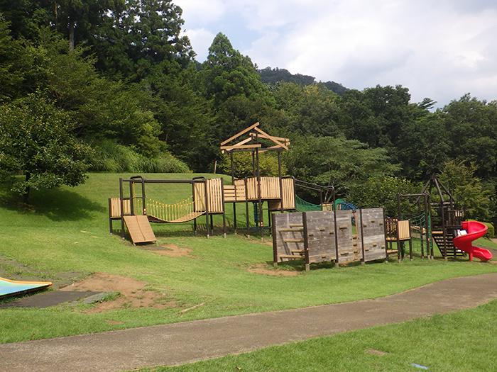 http://www.kanagawa-park.or.jp/tsukuikoshiroyama/park/ne03.jpg